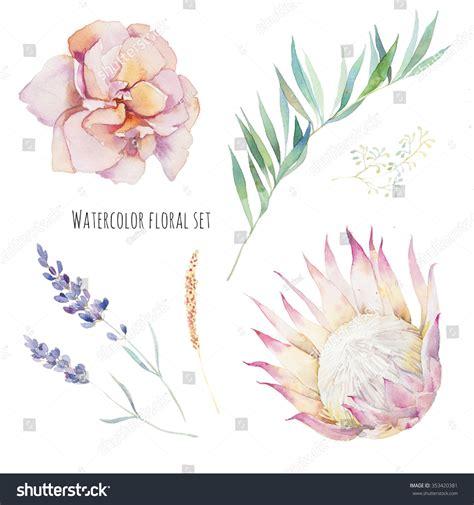 Set Pink Flowery watercolor flowers set painted purple stock
