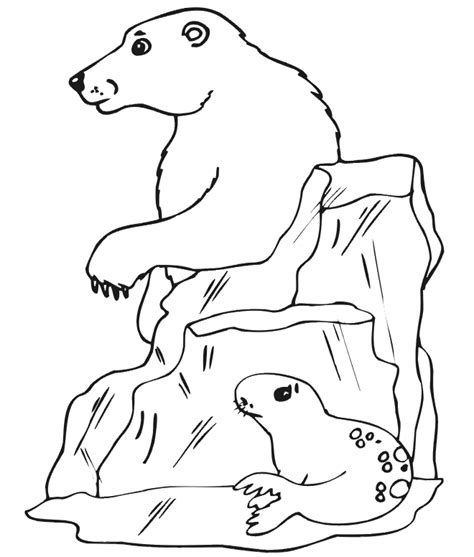 coloring book pages of polar bears free printable polar bear coloring pages for kids