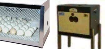 Termometer Mesin Tetas kerja usaha membuat mesin penetas untuk peternakan ayam