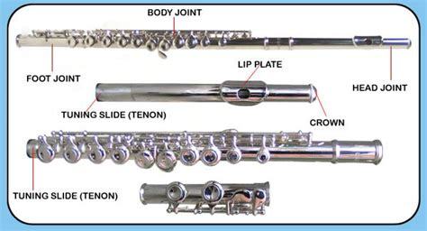 the piccolo is in what section of an orchestra parts of the flute my instrument pinterest