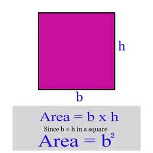 Area Of A Square miss kahrimanis s blog area of squares rectangles and