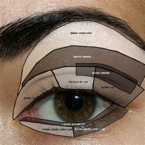 Eyeshadow Hacks eyeshadow hacks tips tricks how to apply eye shadow