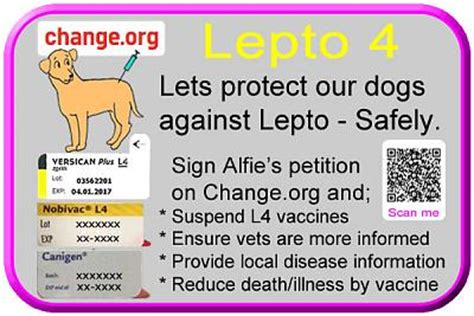 leptospirosis vaccine for dogs lepto 6 and adverse reactions to lepto vaccines for dogs forum switzerland