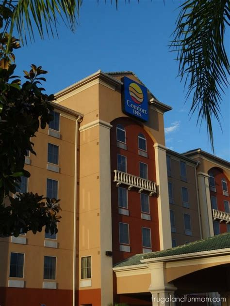 comfort inn international dr friendly staff and free breakfast at the comfort inn on