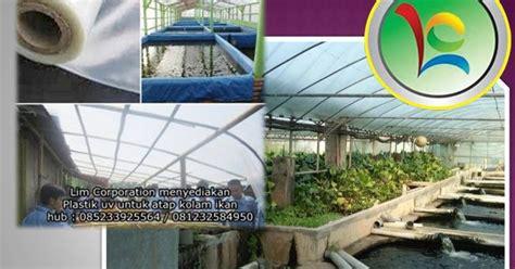 Jual Plastik Uv Batam manfaat plastik uv untuk kolam ikan jual plastik uv