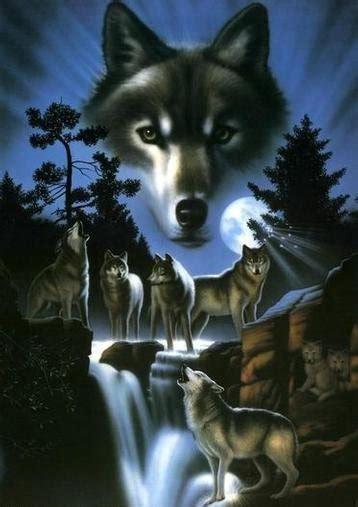 imagenes sorprendentes de lobos 56 lobos im 225 genes fotos y gifs para compartir im 225 genes cool