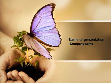 butterfly theme google slides butterfly in your hands powerpoint template backgrounds