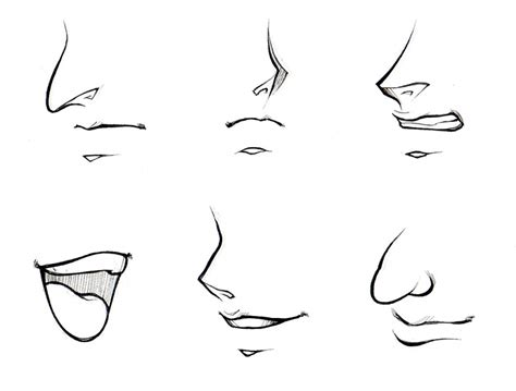 anime nose how to draw anime noses female www pixshark com images