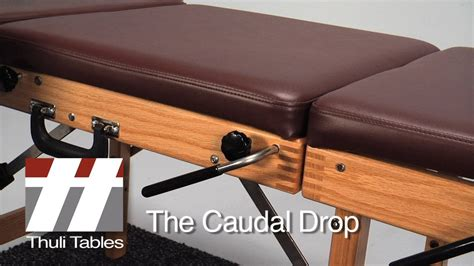chiropractic drop table technique caudal drop positioning on tour portable table thuli