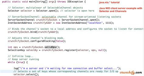 java layout conventions java nio non blocking i o with server client exle