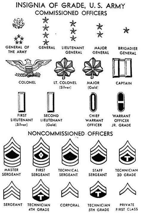 united states navy ranks army ranks all the insignas of united states canadian