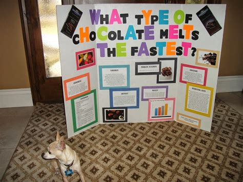 chocolate science project jeana s family blog science fair 2014