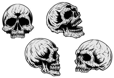 Promo Persib Bobotoh Tengkorak Nevy skulls clipart clipground