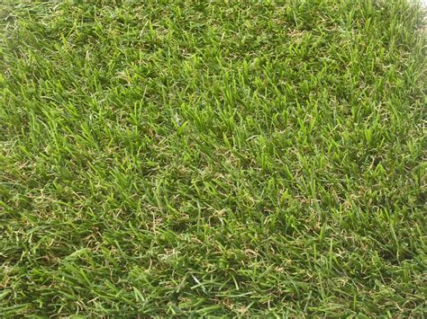 organic colours incorporate the green shades of grass artificial grass fake grass product range perfectly green