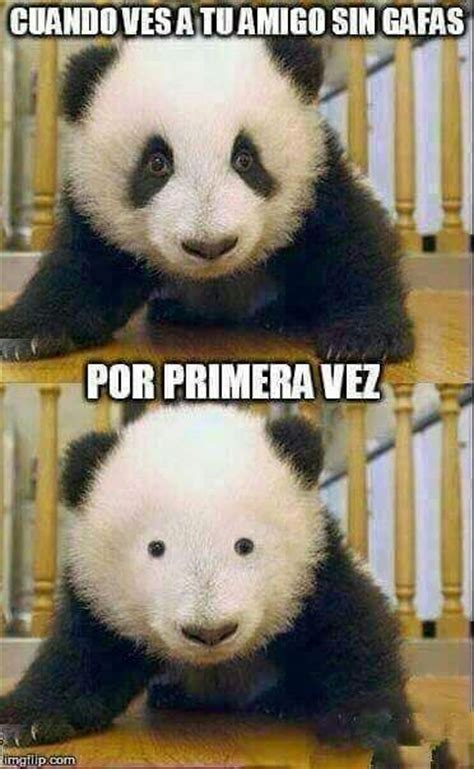 imagenes muy graciosas tumblr 1000 images about risa y memes que te cagas xd on