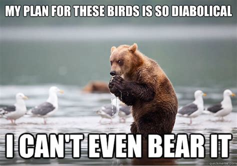 Bear Meme - funniest memes of the week iphone 5 grumpy cat 1990s