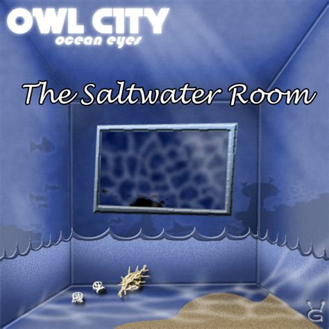 owl city saltwater room owl city the saltwater room by galaxyinvader on deviantart