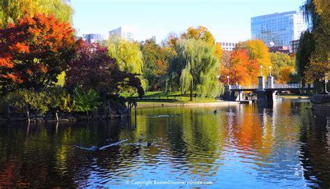 boston fall foliage tours boston discovery guide