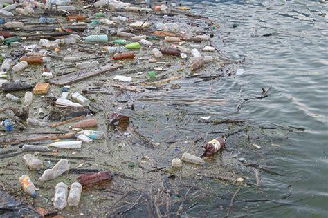soneto sobre la contaminacin del agua contaminaci 243 n del agua 191 cu 225 les son las causas