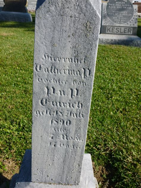 Mercer County Pa Birth Records Tombstone Tuesday Catherina P Emrich 187 S Chatt