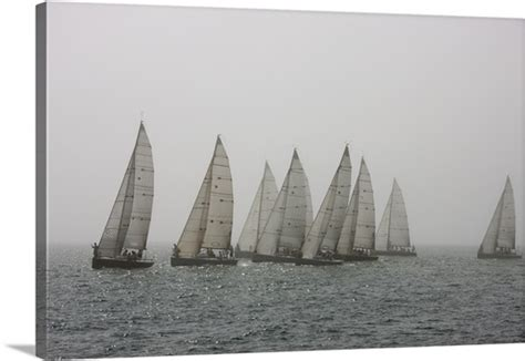 sailboats used in competitive sailing competitive sailing in key west florida usa photo canvas