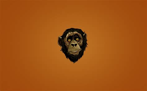 monkey wallpaper for walls monkey face painting brown hair minimalism wallpaper