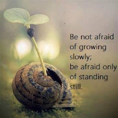 Be Not Afraid by Be Not Afraid Quotes Quotesgram
