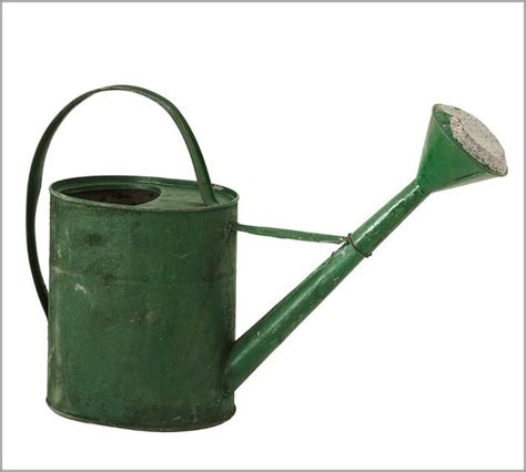 pb found watering can traditional watering cans by
