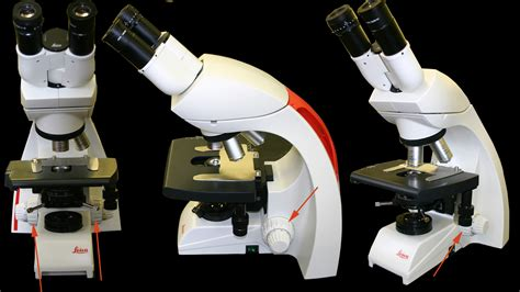 Coarse Adjustment Knob Microscope by Department Of Botany