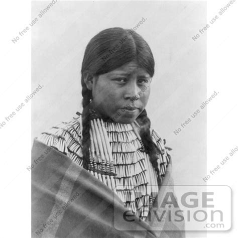 free mative american braids for hair photos stock image cheyenne native woman wearing braids 6957