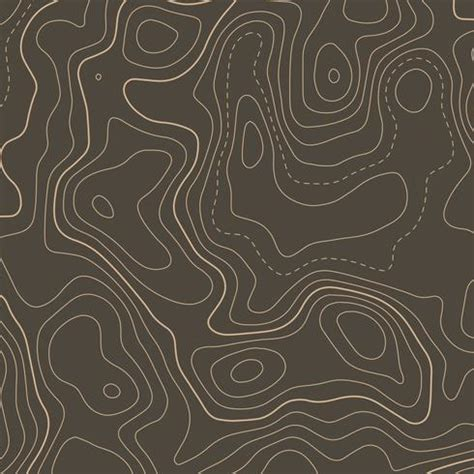 topographic contour map elevation background download