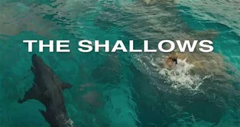 The Shallows the shallows 2016 in abu dhabi abu dhabi information portal