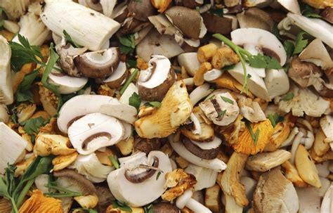 cucinare i funghi prataioli funghi in cucina la cucina italiana