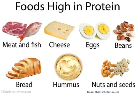 5 proteins in our 5 common food myths debunked