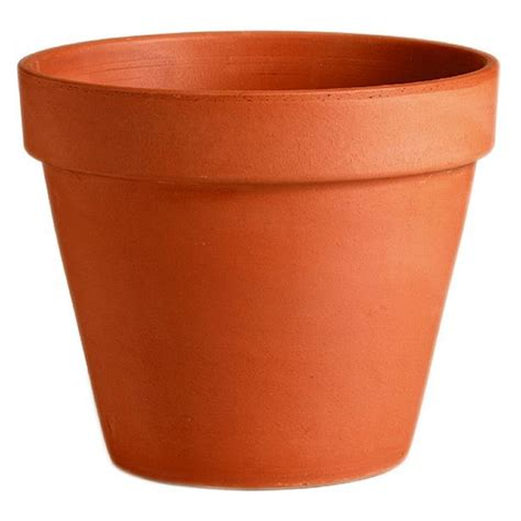 plant potters terracotta plant pot 11cm at homebase co uk