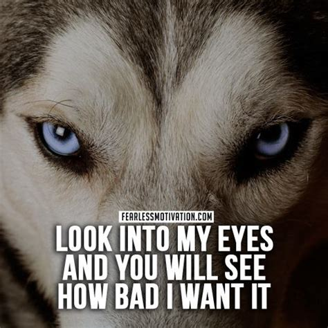 Eyeball Pc No I Dont Get It Either by 20 Strong Wolf Quotes To You Up Wolves Wolfpack