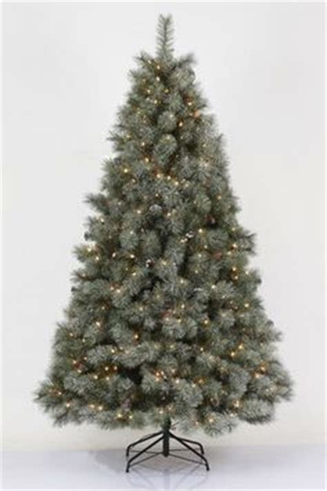 7 5 pre lit philips remains lit balsam fir tree clear