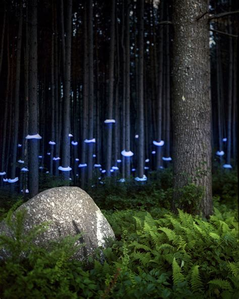 Landscape Architecture Lighting 2012 In Review April