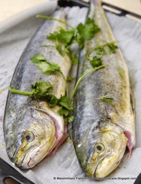 come si cucina il pesce al forno cucinare il pesce in forno luga con finocchietto erba