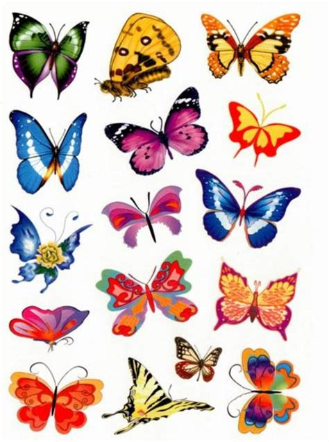 Butterfly Colour free worksheets 187 butterfly pictures to colour free math