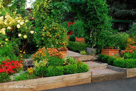 Hgtv Gardening Ideas Tune In To Gardening By The Yard On Hgtv For A Tour Of My Summer Garden 187 Edible Landscaping