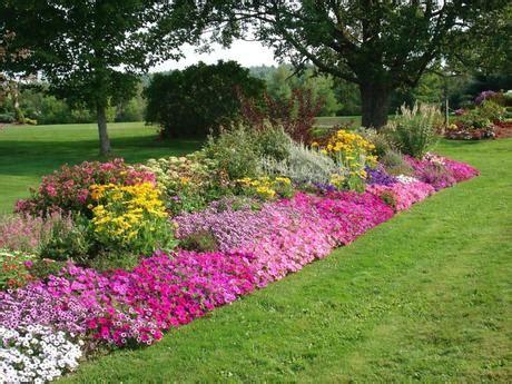 aiuole fiorite tutto l anno fiori tutto l anno paperblog