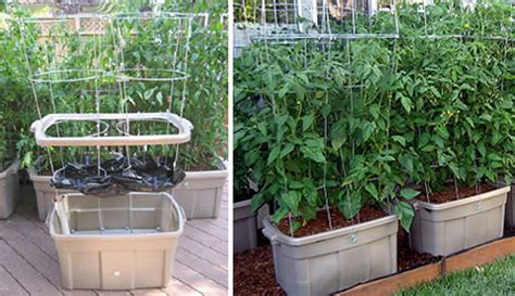 container gardening self watering earthtainer self watering storage container gardening
