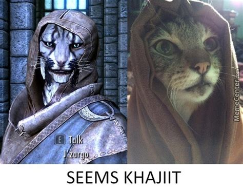 Khajiit Meme - elder scrolls memes best collection of funny elder
