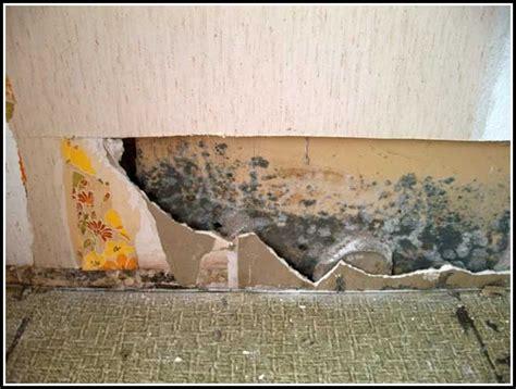schimmel schlafzimmer mietminderung schimmel im wohnzimmer mietminderung page beste
