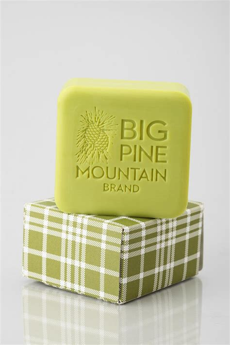 Mountain Detox Soap by 17 Best Images About Zeep On