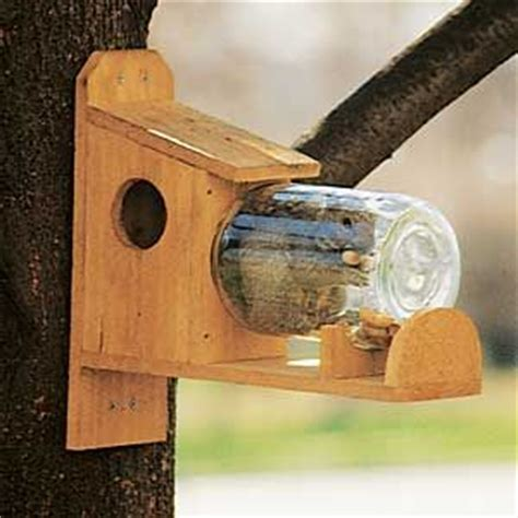 25 best ideas about squirrel feeder on pinterest what