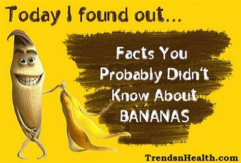 carbohydrates 6 facts interesting and unknown banana nutrition facts trends