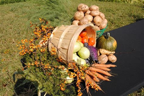 harvest centerpiece harvest ideas pinterest