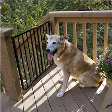 porch gate for dogs stairway special outdoor pet gate